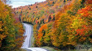 Aroostook County Foliage Scenic Drive
